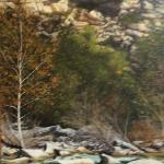 Barton Creek Cliff 48 x 24 Oil $4200