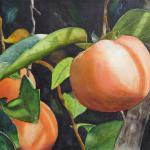 Just Peachy II 36 X 28 Watercolor $1500