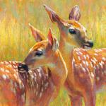 Twin Fawns II 18 x 18 Pastel $975