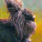 Milly Mop 10 x 8 Pastel $390 10% of the proceeds of this will be doated to House Rabbit Society