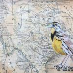 Meadowlark 8 X 10 Acrylic on Vintage Map $300