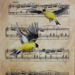 Goldfinches 14 x 11 Acrylic on Sheet Music $300