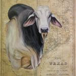 Brahma Bull  20 x 16 Acrylic on Vintage Map $800